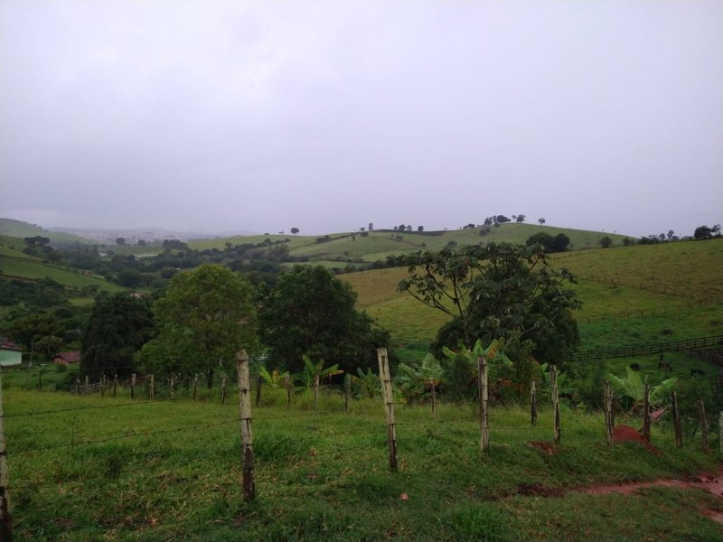Sítio - Venda - Zona Rural - Borda da Mata - MG